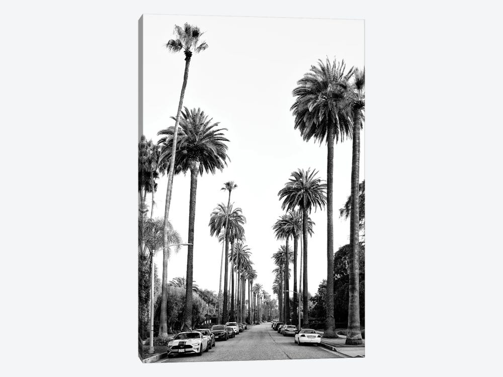 Black California Series - Los Angeles Palm Alley by Philippe Hugonnard 1-piece Canvas Art
