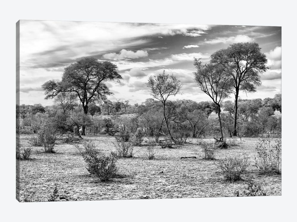 Awesome South Africa Series: African Landscape by Philippe Hugonnard 1-piece Canvas Artwork