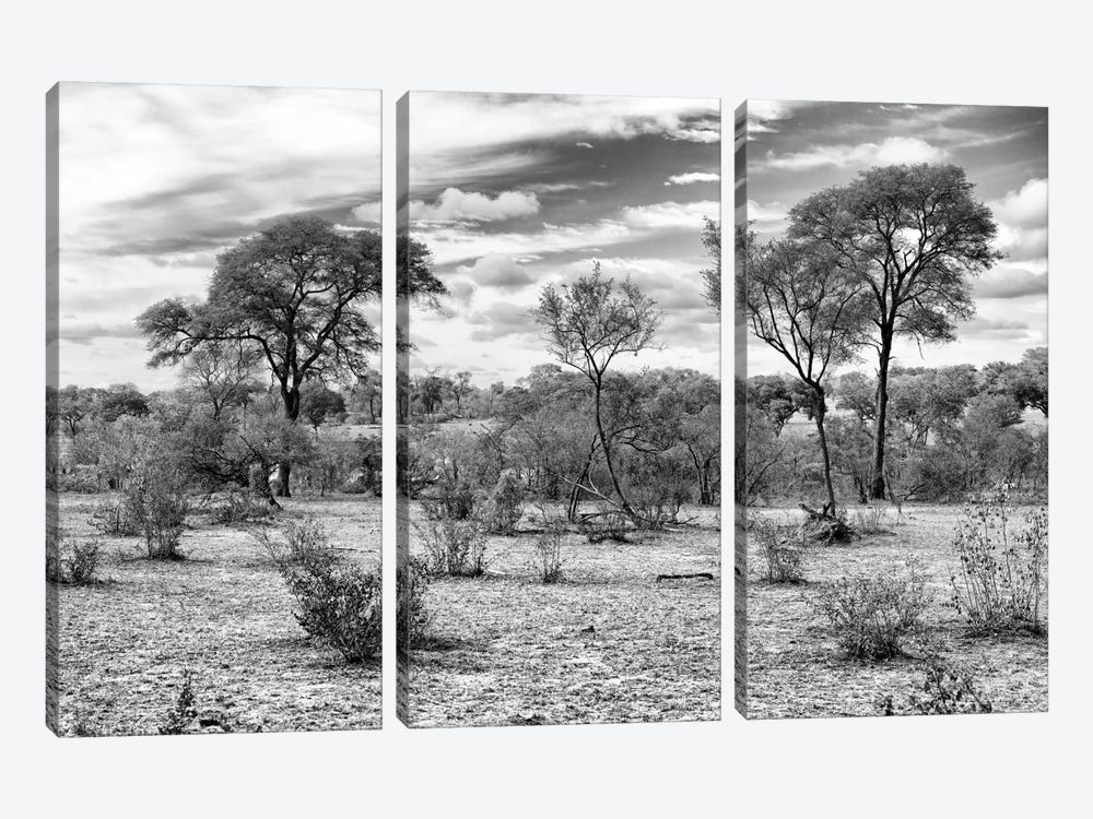 Awesome South Africa Series: African Landscape by Philippe Hugonnard 3-piece Canvas Artwork