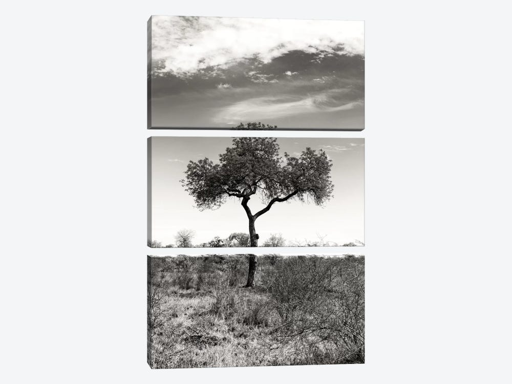 Awesome South Africa Series: African Landscape II by Philippe Hugonnard 3-piece Canvas Print