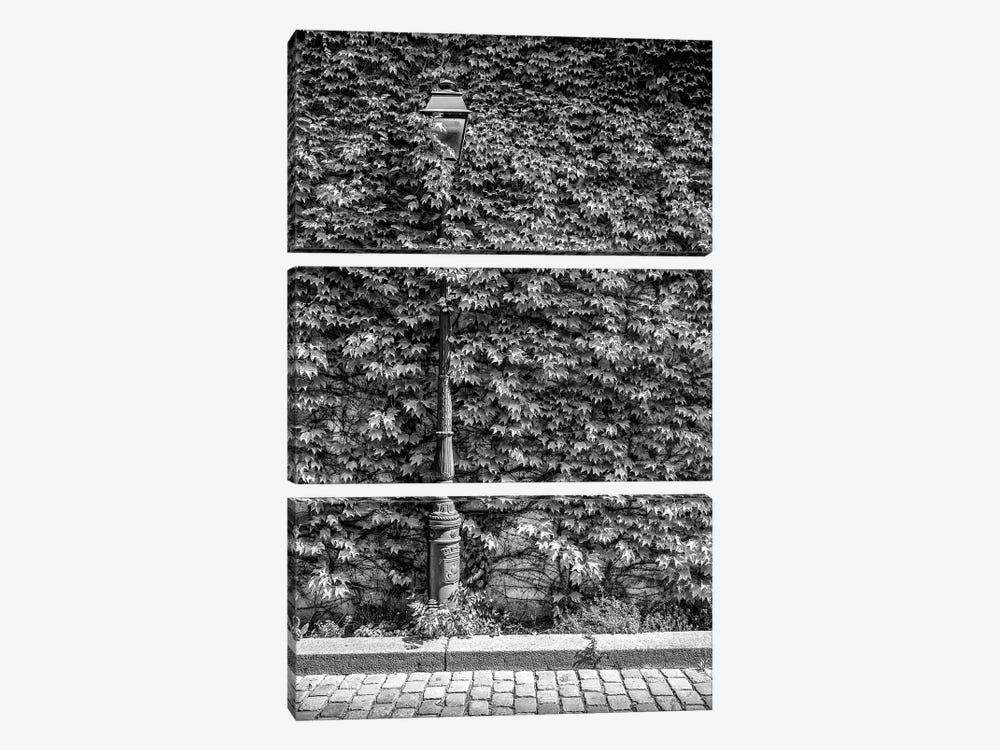 Black Montmartre Series - Hidden Between The Leaves by Philippe Hugonnard 3-piece Canvas Art Print