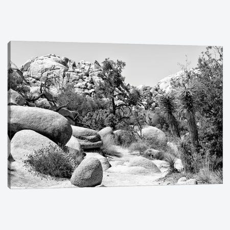 Black Nevada Series - Between Two Rocks Canvas Print #PHD1920} by Philippe Hugonnard Canvas Art