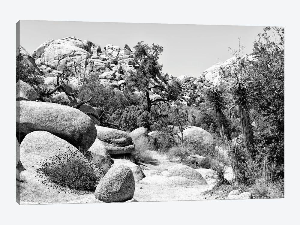 Black Nevada Series - Between Two Rocks by Philippe Hugonnard 1-piece Canvas Art
