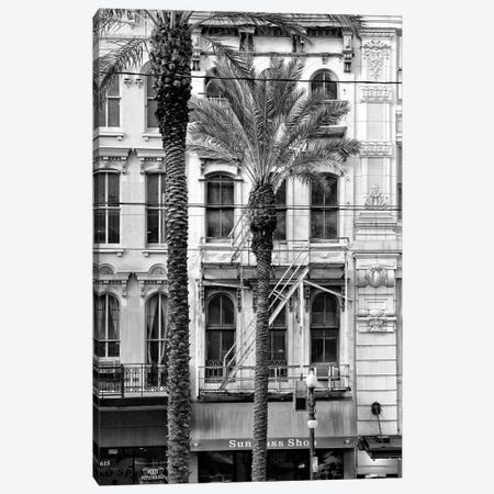Black NOLA Series - Palm Tree Facade Canvas Print #PHD1956} by Philippe Hugonnard Canvas Wall Art