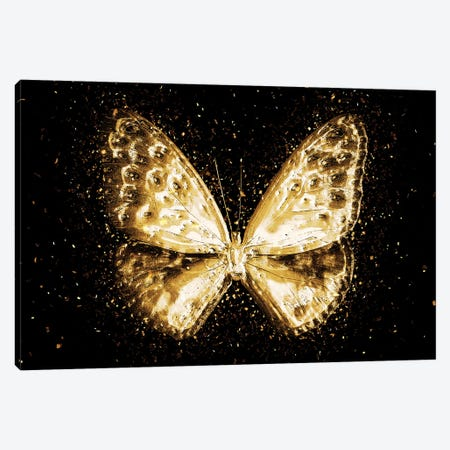 Golden - Butterfly I Canvas Print #PHD2005} by Philippe Hugonnard Canvas Art