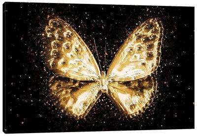 Golden - Butterfly I Canvas Art Print