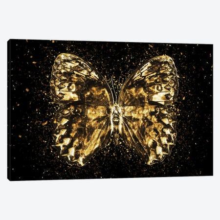 Golden - Butterfly II Canvas Print #PHD2006} by Philippe Hugonnard Canvas Art