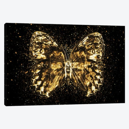 Golden - Butterfly II Canvas Print #PHD2006} by Philippe Hugonnard Canvas Art