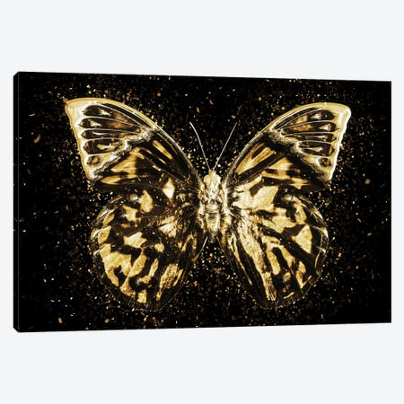 Golden - Butterfly III Canvas Print #PHD2007} by Philippe Hugonnard Canvas Artwork