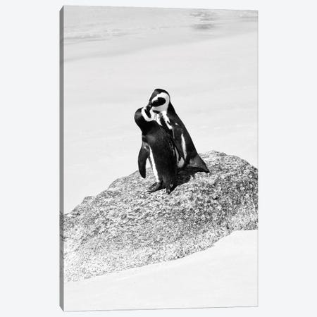 Penguin Lovers Canvas Print #PHD205} by Philippe Hugonnard Canvas Art Print