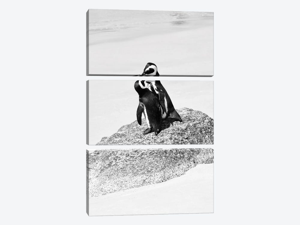 Penguin Lovers by Philippe Hugonnard 3-piece Canvas Artwork