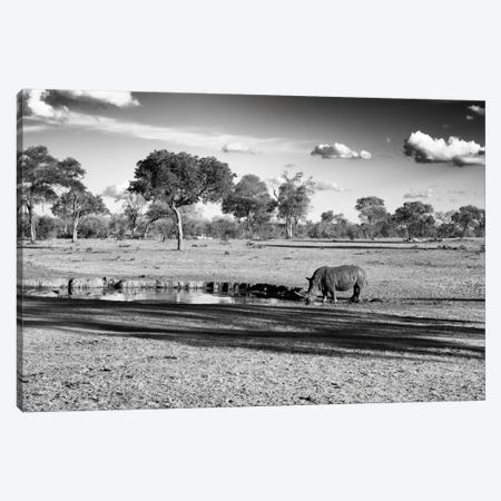 Savannah View with one Black Rhino Canvas Print #PHD211} by Philippe Hugonnard Canvas Print