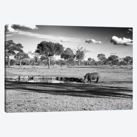 Savannah View with one Black Rhino Canvas Print #PHD211} by Philippe Hugonnard Canvas Print