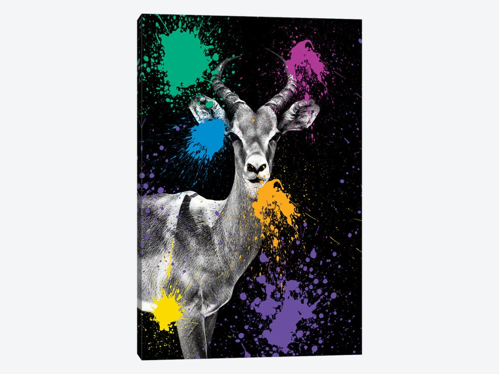Safari Color Pop Series: Antelope Impala by Philippe Hugonnard 1-piece Art Print