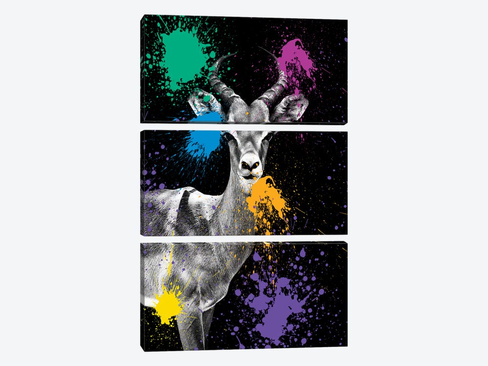Safari Color Pop Series: Antelope Impala by Philippe Hugonnard 3-piece Canvas Art Print