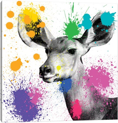 Safari Color Pop Series: Antelope Portrait II Canvas Art Print