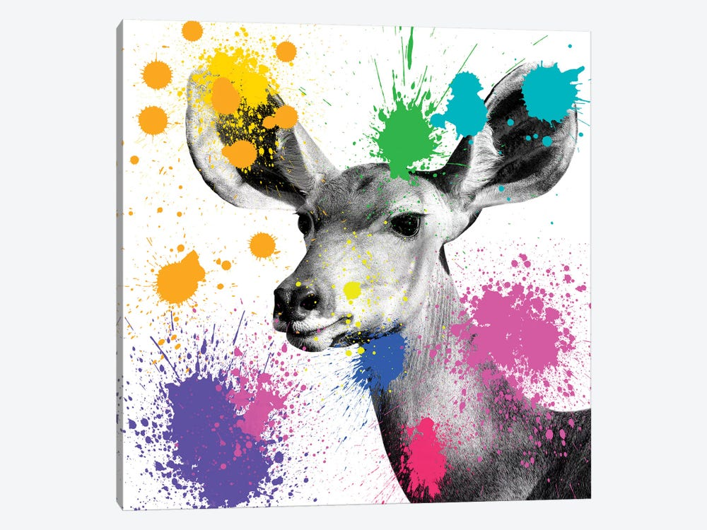 Safari Color Pop Series: Antelope Portrait II by Philippe Hugonnard 1-piece Canvas Print