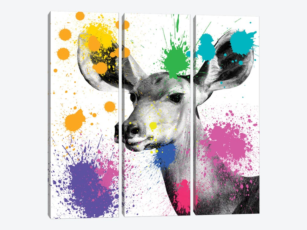 Safari Color Pop Series: Antelope Portrait II by Philippe Hugonnard 3-piece Canvas Print