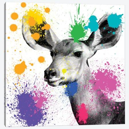 Antelope Portrait II Canvas Print #PHD219} by Philippe Hugonnard Art Print