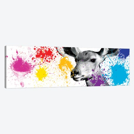 Antelope Portrait III Canvas Print #PHD220} by Philippe Hugonnard Canvas Artwork