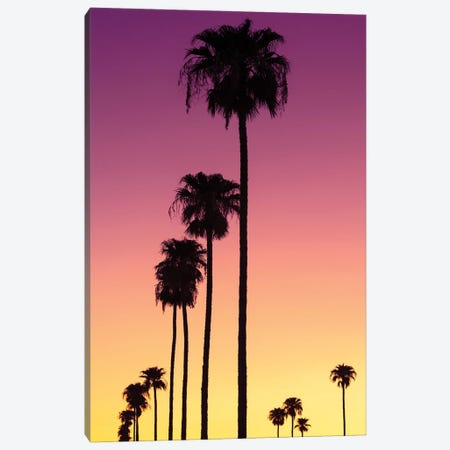 American West - Sunset Palm Trees Canvas Print #PHD2215} by Philippe Hugonnard Canvas Art Print