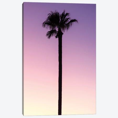 American West - Palm Pink Canvas Print #PHD2221} by Philippe Hugonnard Art Print