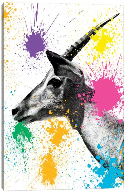 Safari Color Pop Series: Antelope Profile Canvas Art Print