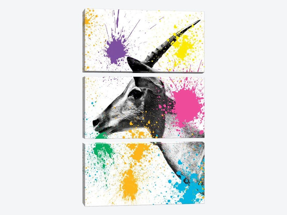 Antelope Profile by Philippe Hugonnard 3-piece Canvas Art