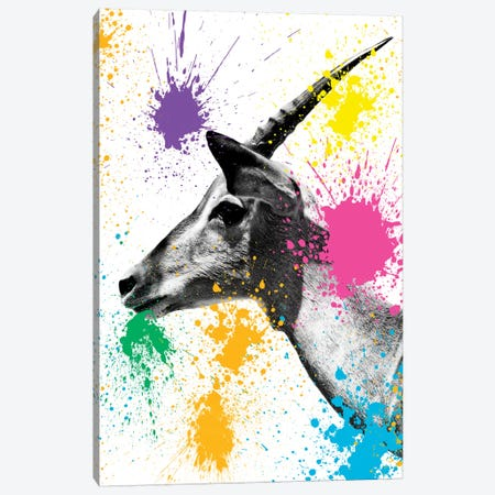 Antelope Profile Canvas Print #PHD223} by Philippe Hugonnard Canvas Artwork