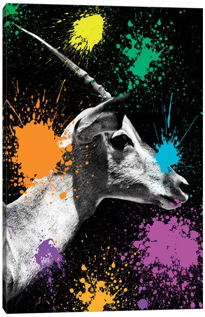 Safari Color Pop Series: Antelope Profile II Canvas Art Print