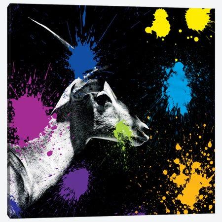 Antelope Profile III Canvas Print #PHD225} by Philippe Hugonnard Canvas Print