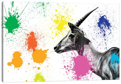 Safari Color Pop Series: Antelope Profile IV Canvas Art Print