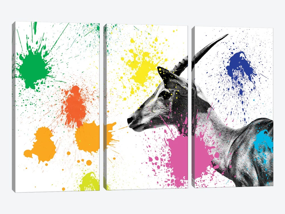 Antelope Profile IV by Philippe Hugonnard 3-piece Art Print