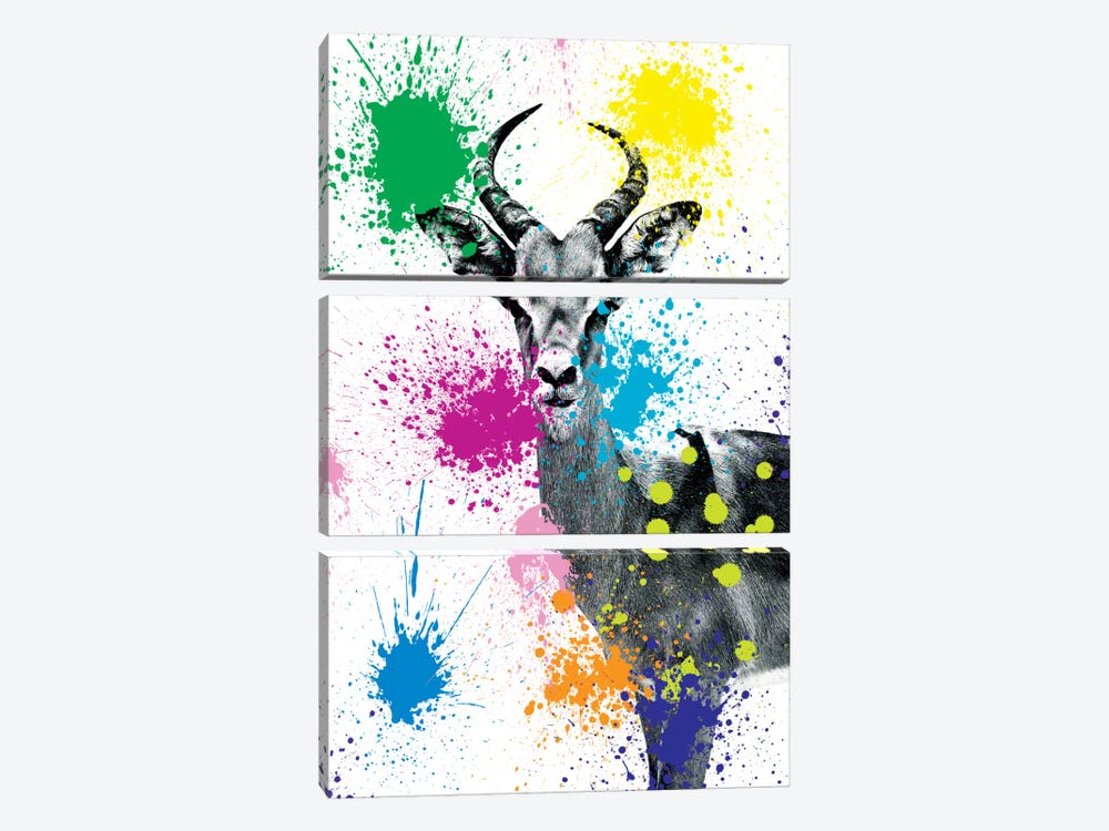 Safari Color Pop Series: Antelope Reedbuck V by Philippe Hugonnard 3-piece Canvas Art Print