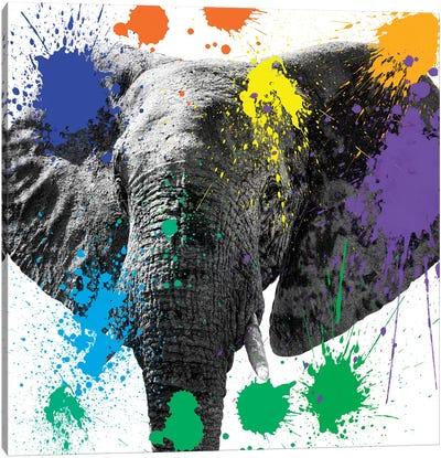 Safari Color Pop Series: Elephant II Canvas Print #PHD229