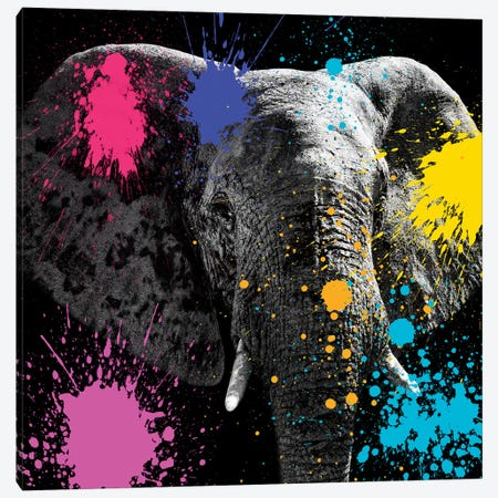 Elephant III Canvas Print #PHD230} by Philippe Hugonnard Canvas Art Print