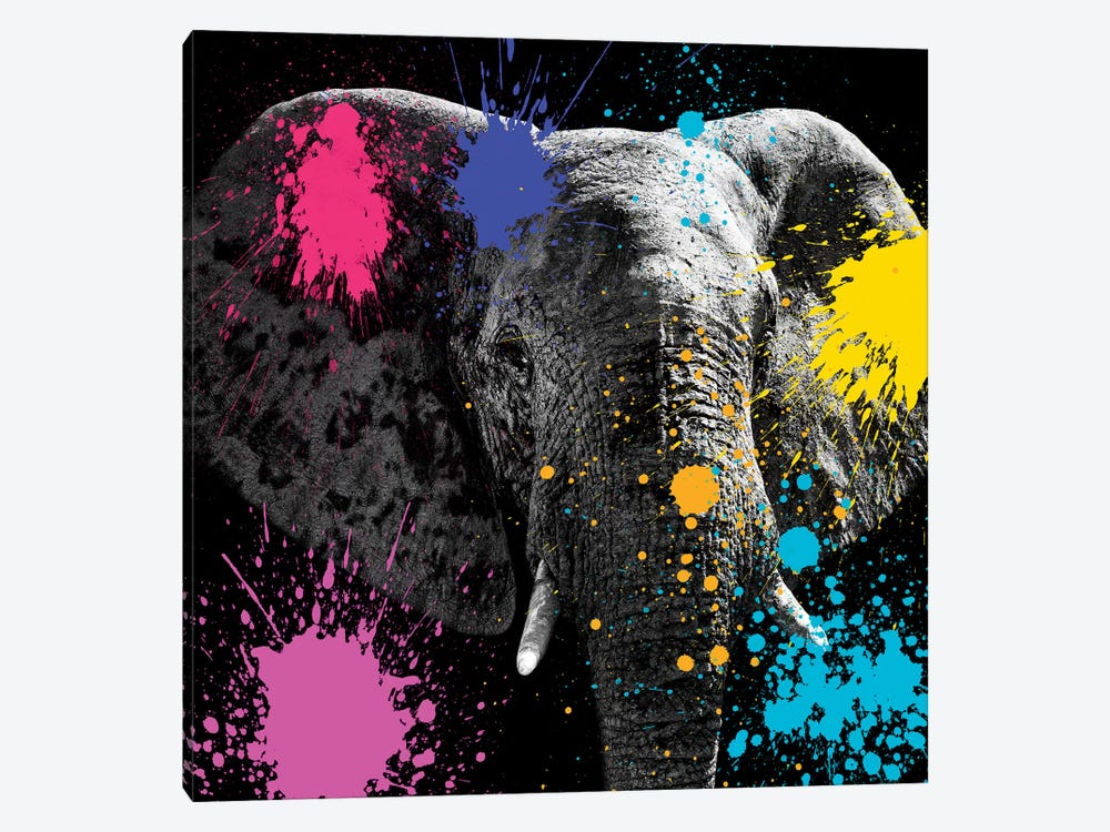 Safari Color Pop Series: Elephant III by Philippe Hugonnard 1-piece Canvas Art