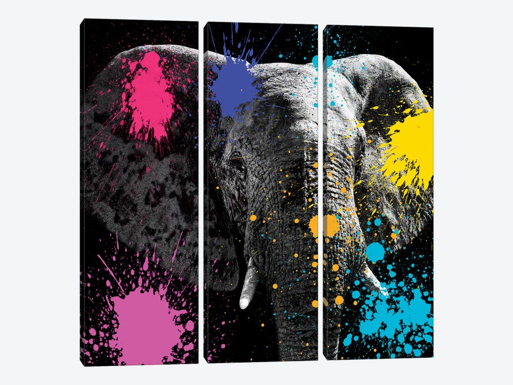 Safari Color Pop Series: Elephant III by Philippe Hugonnard 3-piece Canvas Wall Art
