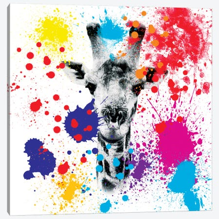 Giraffe III Canvas Print #PHD231} by Philippe Hugonnard Canvas Print