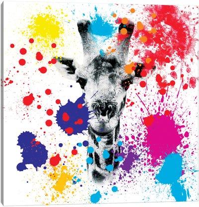 Safari Color Pop Series: Giraffe III Canvas Print #PHD231