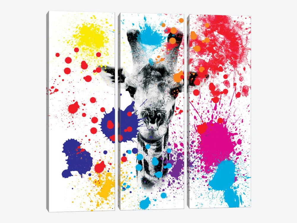 Giraffe III by Philippe Hugonnard 3-piece Canvas Art Print