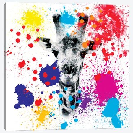 Giraffe III Canvas Print #PHD231} by Philippe Hugonnard Canvas Print