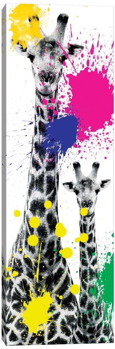 Safari Color Pop Series: Giraffes III Canvas Print #PHD234