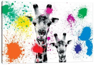 Safari Color Pop Series: Giraffes Portrait Canvas Print #PHD235