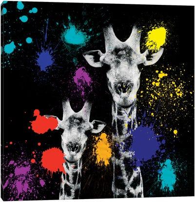 Giraffes Portrait VI Canvas Art Print