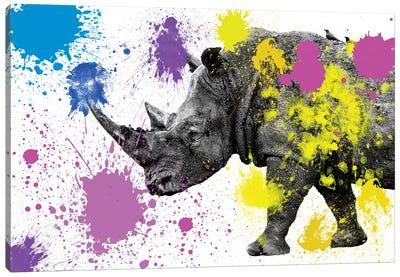 Safari Color Pop Series: Rhino  Canvas Print #PHD237
