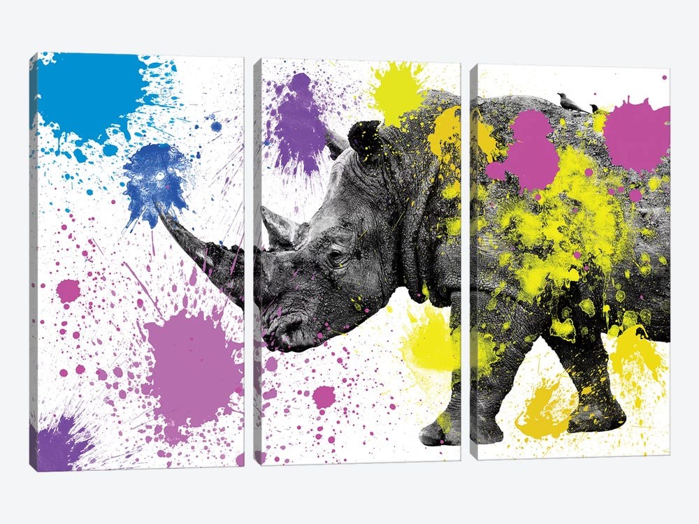 Safari Color Pop Series: Rhino by Philippe Hugonnard 3-piece Art Print