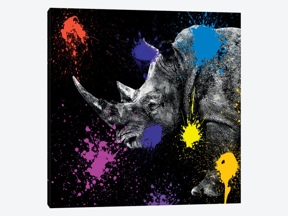 Safari Color Pop Series: Rhino Portrait by Philippe Hugonnard 1-piece Canvas Artwork