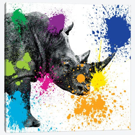 Rhino Portrait II Canvas Print #PHD239} by Philippe Hugonnard Canvas Print