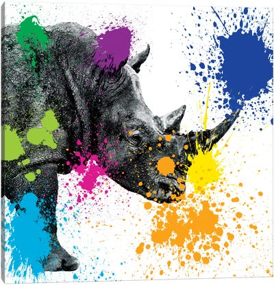 Rhino Portrait II Canvas Art Print